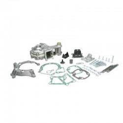 Carters moteur MALOSSI 103 SPX